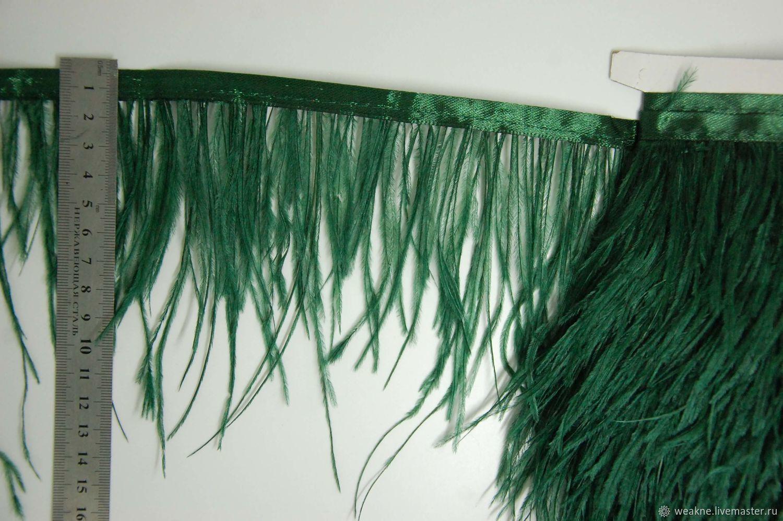 Copy of Trim of ostrich feathers 10-15 cm green, braid, Moscow,  Фото №1