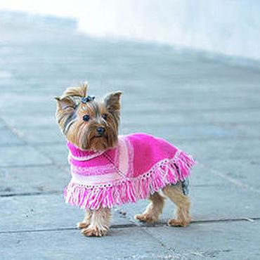 """Для домашних животных, ручной работы. Ярмарка Мастеров - ручная работа Пончо для маленькой собачки """" Люси """". Handmade."""