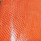 Материалы для творчества handmade. Livemaster - original item The skin of a lizard (iguana), color white, covering semi gloss.. Handmade.