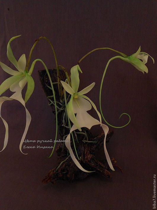 Интерьерные композиции ручной работы. Ярмарка Мастеров - ручная работа. Купить Орхидея призрак.Керамическая флористика цветы из полимерной. Handmade.