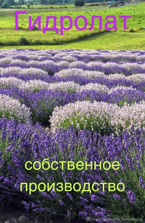 Гидролат - собственное производство, Тоники, Москва,  Фото №1