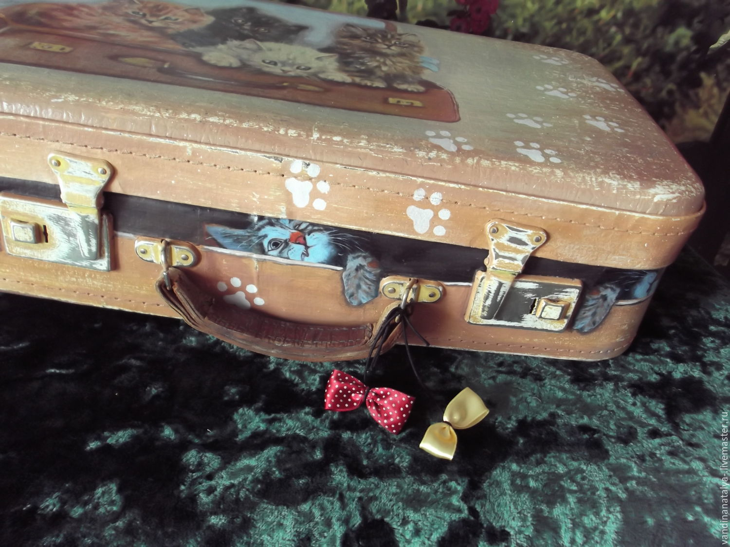 A suitcase with kittens