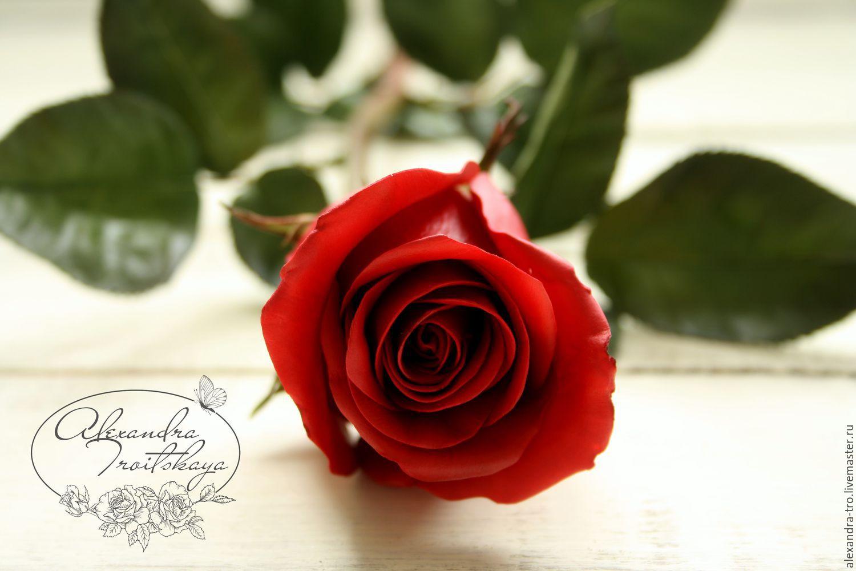 Купить бокаловидные розы доставка цветов чаплинка