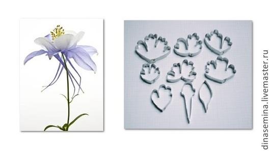 Набор каттеров для создания цветов аквилегия водосбор эустома. Таиланд. Сделаны по спец-заказу по рисунку заказчицы (размеры сняты с живого цветка). Набор 9 каттеров - 850р