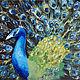 Животные ручной работы. Ярмарка Мастеров - ручная работа. Купить Картина Павлин. Handmade. Комбинированный, черный фон
