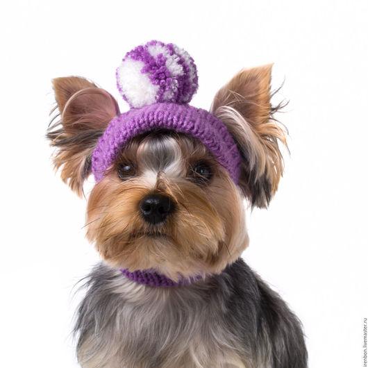 Одежда для собак, ручной работы. Ярмарка Мастеров - ручная работа. Купить Вязаная шапка для собаки с козырьком. Handmade. Шапка для собаки