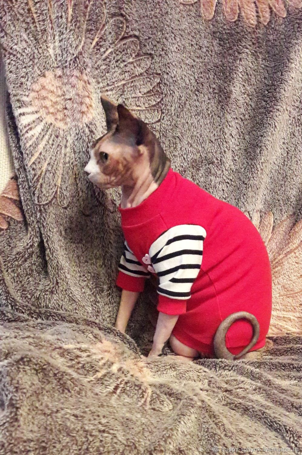 Clothing for cats 'Dude', Pet clothes, Biisk,  Фото №1