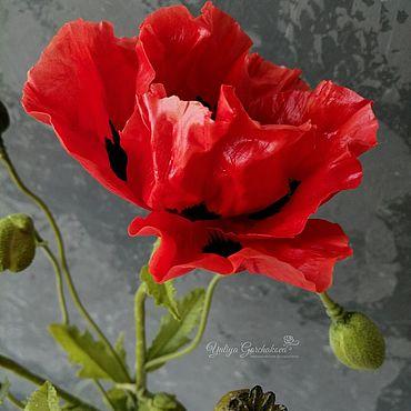 Flowers and floristry handmade. Livemaster - original item Poppy Red poppy Cold porcelain. Handmade.