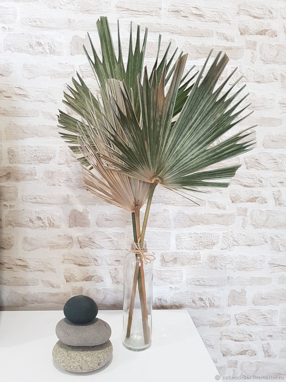 Лист пальмы, пики пальмы, Элементы интерьера, КраснаяПоляна,  Фото №1