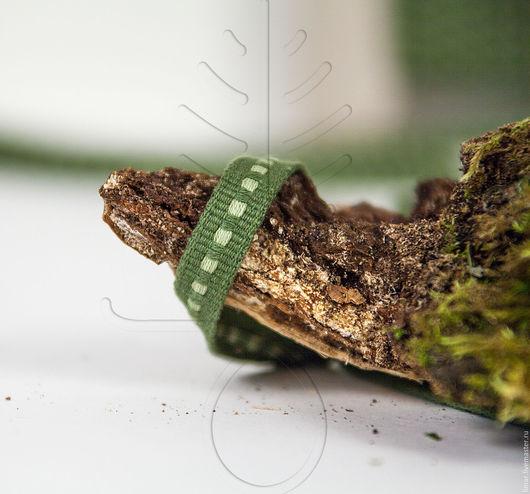 Хлопковая тесьма 10 мм, `Лесной мох`