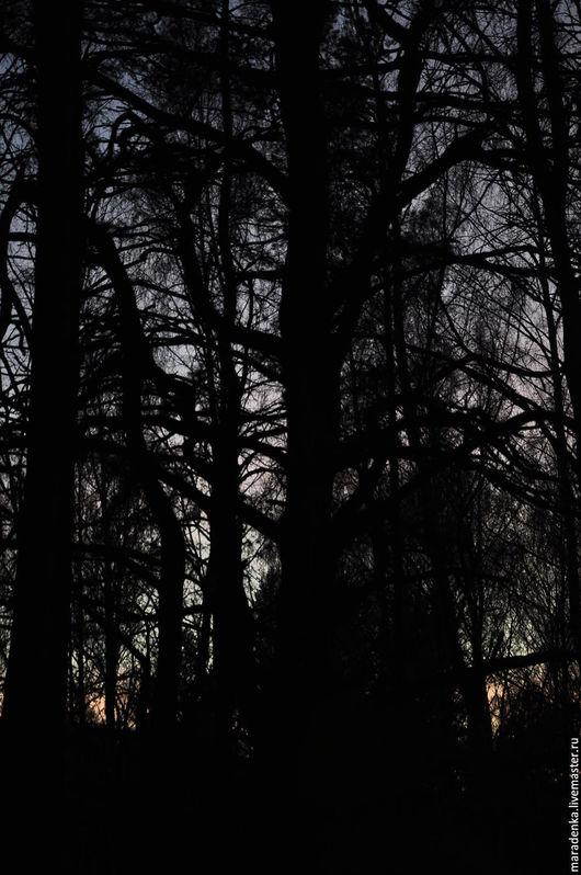 Фотокартины ручной работы. Ярмарка Мастеров - ручная работа. Купить Дебри. Handmade. Черный, лес, страшилка, страшный, деревья, чаща