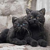 Мягкие игрушки ручной работы. Ярмарка Мастеров - ручная работа Британская кошка с котенком. Реалистичные игрушки. Handmade.