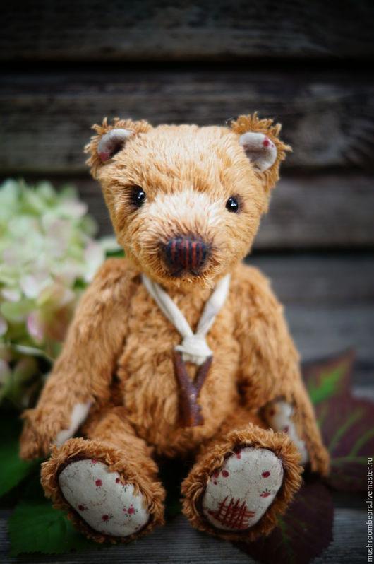Мишки Тедди ручной работы. Ярмарка Мастеров - ручная работа. Купить Тедди мишка Хома. Handmade. Тедди, тедди медведи