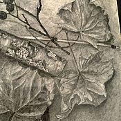 Картины ручной работы. Ярмарка Мастеров - ручная работа Картина Ноской «Листья». Карандаш.. Handmade.
