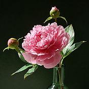 Розовый пион (холодный фарфор)