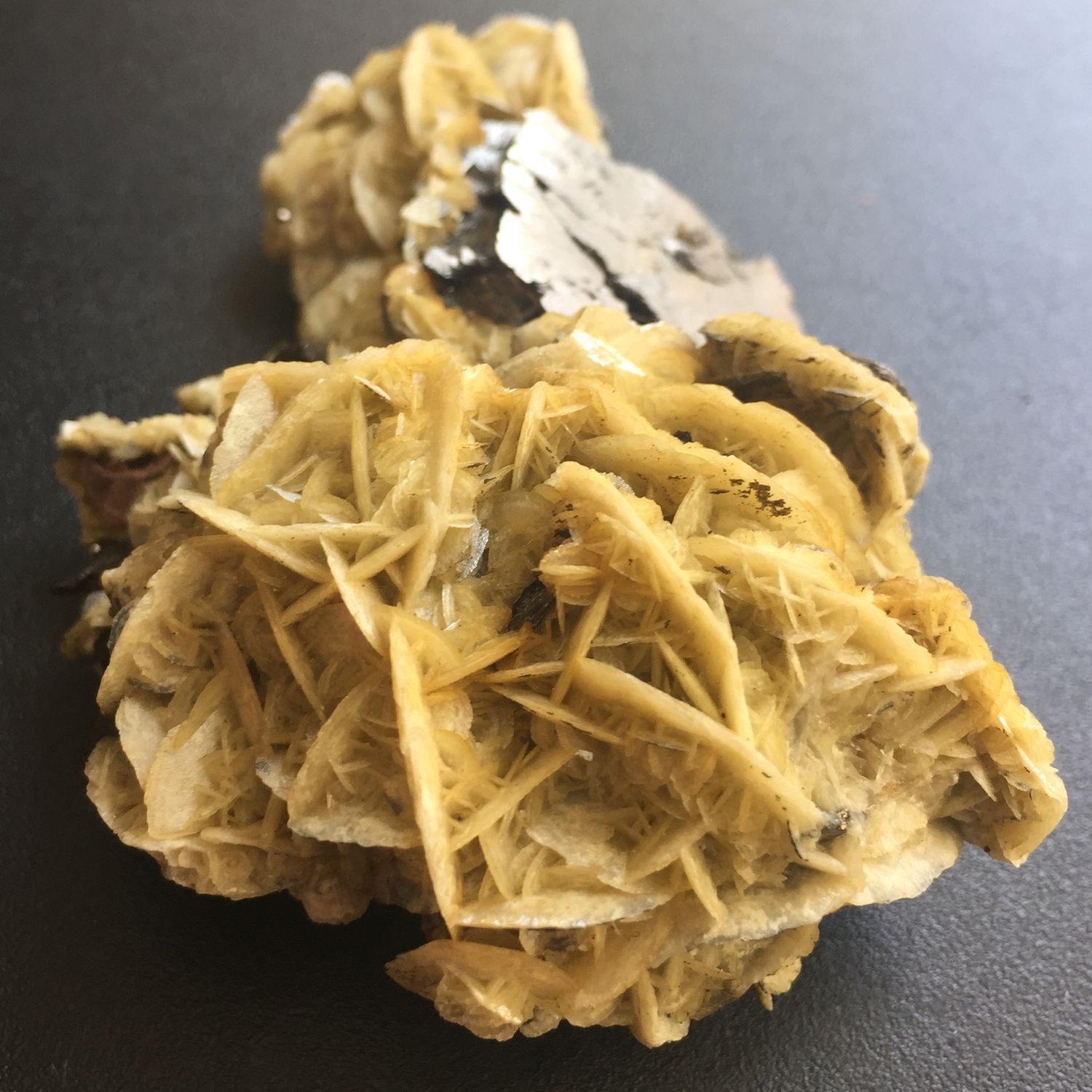 Calcite rose (Druze) in symbiosis with pyrite and chalcopyrite, Druse, Krasnodar,  Фото №1