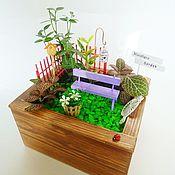 Маленький мини-садик в деревянном ящике