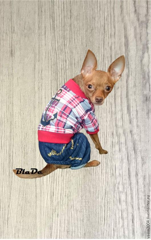"""Одежда для собак, ручной работы. Ярмарка Мастеров - ручная работа. Купить Комбинезон """"Морской бриз"""". Handmade. Синий, ротвейлер, пуговица"""