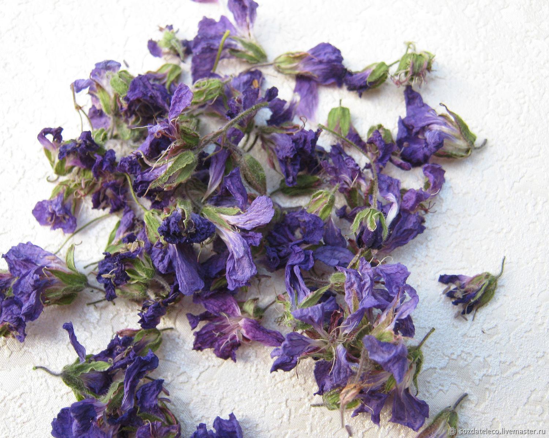 Цветы герани лесной. Сухоцветы. Цена за 1 грамм, Сухоцветы, Ветлуга,  Фото №1