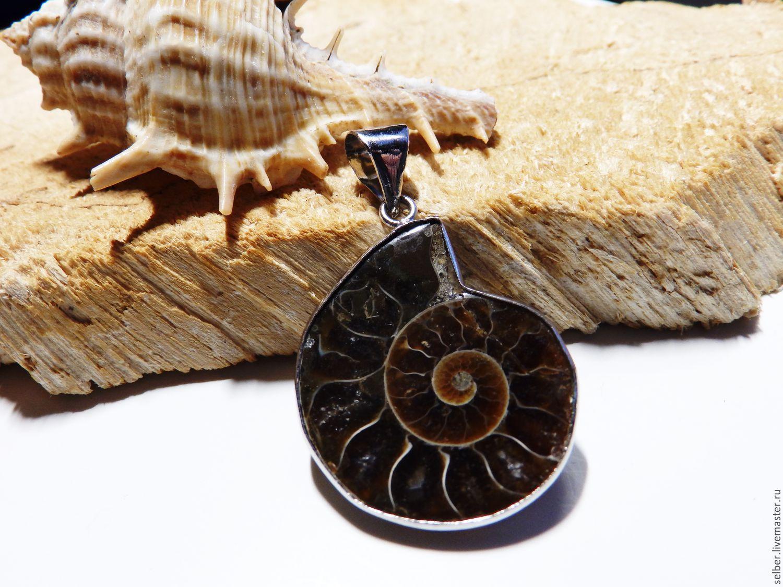 Pendant Ancient ocean Ammonite 2, Pendants, Gatchina,  Фото №1