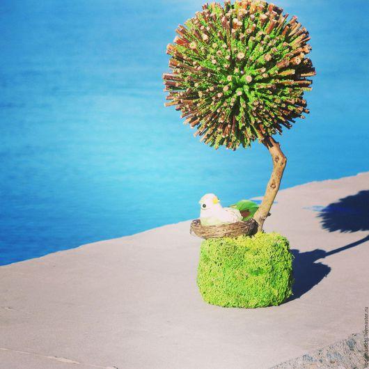 """Топиарии ручной работы. Ярмарка Мастеров - ручная работа. Купить """"На зеленой опушке"""". Handmade. Зеленый, ароматный подарок"""