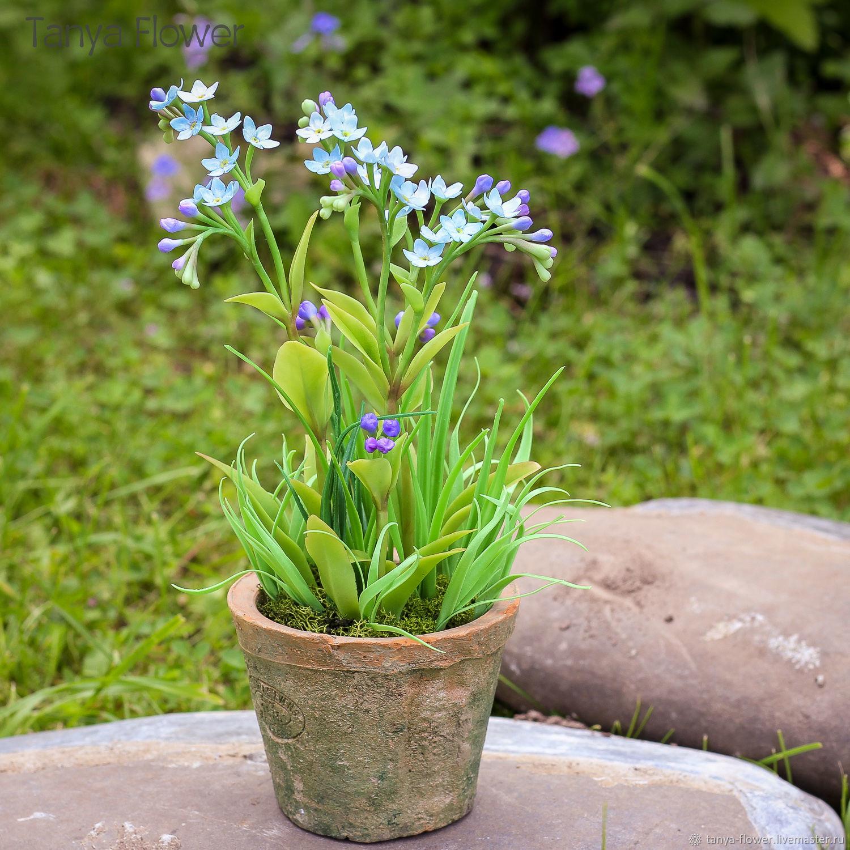 Заказать букет из незабудок в москве, доставка цветов по сенгилея