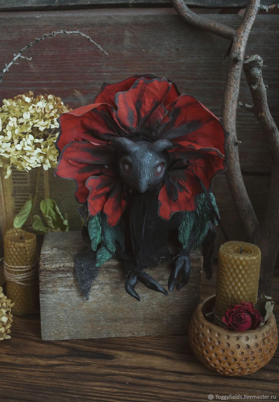 Мак Снотворный/ Papaver Somniferum, Чердачная кукла, Омск,  Фото №1