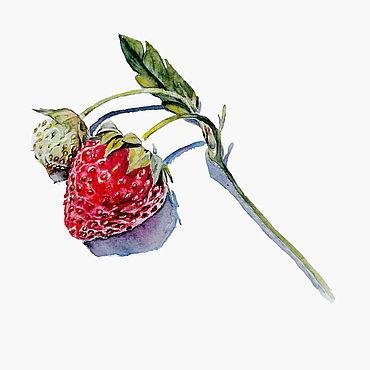 """Картины и панно ручной работы. Ярмарка Мастеров - ручная работа Акварельная картина """"Летняя ягода"""". Handmade."""