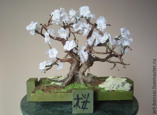 Бонсай ручной работы. Ярмарка Мастеров - ручная работа. Купить Сакура в стиле Sokan («Раздвоенный ствол»). Handmade. Бонсай, растение