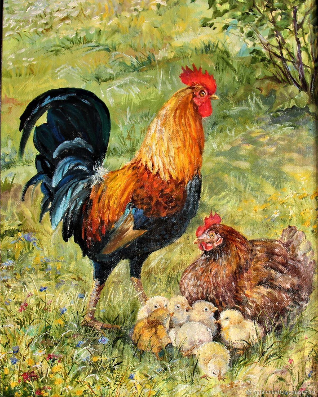 Картинки петуха и курицы
