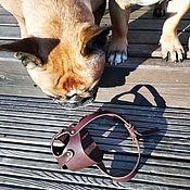 Зоотовары handmade. Livemaster - original item Leather muzzle for bulldog. Handmade.