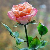 Цветы и флористика ручной работы. Ярмарка Мастеров - ручная работа Кремовая роза из полимерной глины. Handmade.