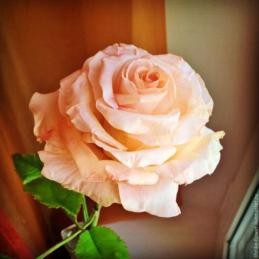 Цветы ручной работы. Ярмарка Мастеров - ручная работа. Купить Роза из глины (холодный фарфор). Handmade. Бледно-розовый
