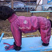 Для домашних животных, handmade. Livemaster - original item Raincoat for large dogs. Handmade.