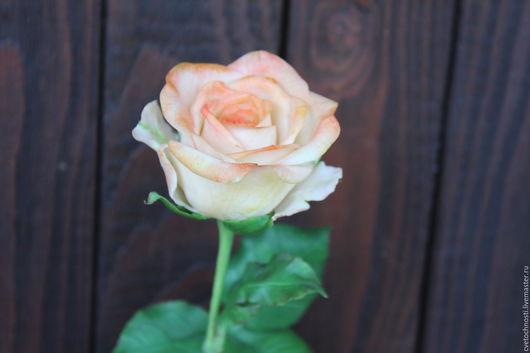 Цветы ручной работы. Ярмарка Мастеров - ручная работа. Купить Роза из холодного фарфора. Handmade. Кремовый, цветы на свадьбу