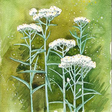Картины и панно ручной работы. Ярмарка Мастеров - ручная работа Акварель - белые цветы. Handmade.