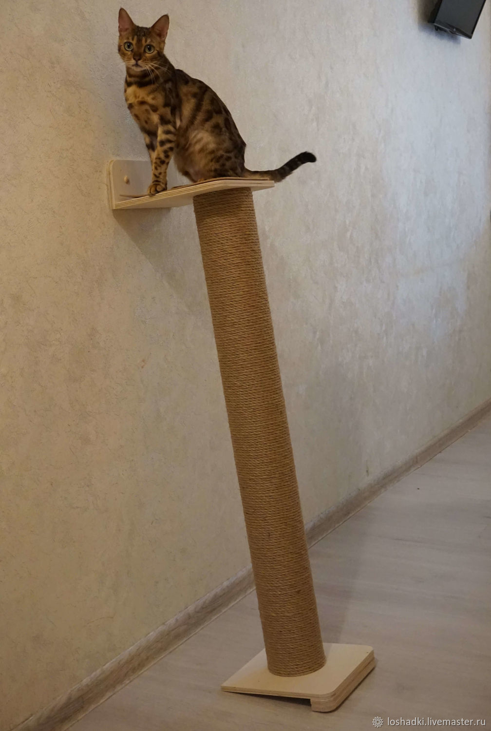 Post-scratching post inclined, Scratching Post, Pleasant,  Фото №1