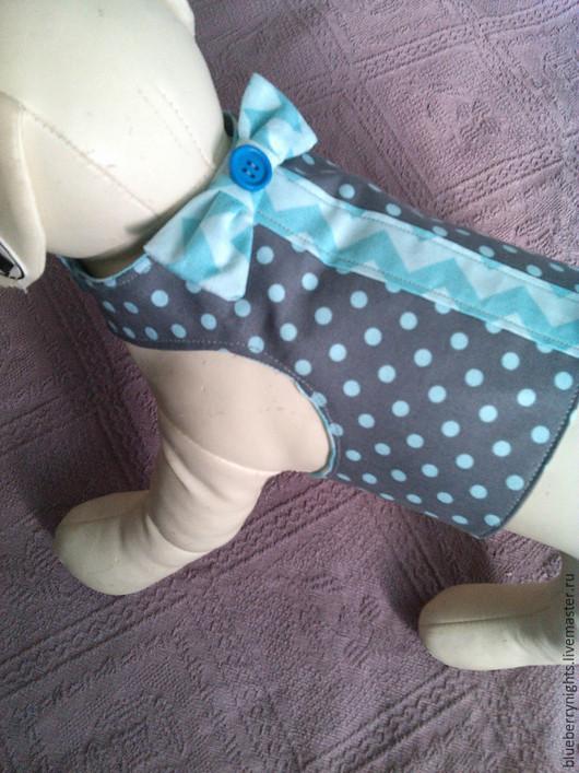 """Одежда для собак, ручной работы. Ярмарка Мастеров - ручная работа. Купить Желетка для маленькой собачки"""" Горошки"""". Handmade. Серый, дублерин"""