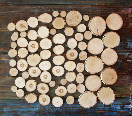 Спилы дерева небольшие. Спилы для поделок и украшений. Спилы для декора. Спилы для творчества. Декор. Спилы деревянные. Деревянные спилы.