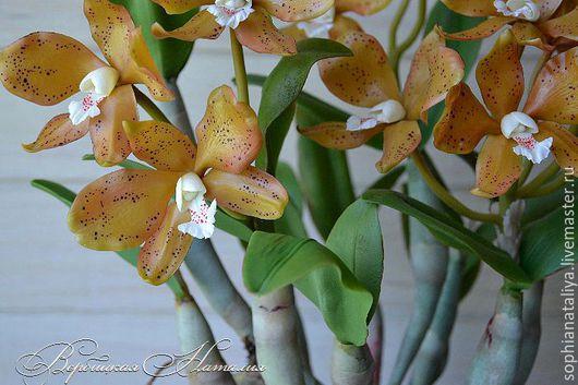 Цветы ручной работы. Ярмарка Мастеров - ручная работа. Купить Орхидея холодный фарфор каттлея красивые цветы. Handmade.