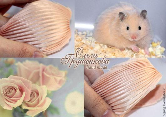 Лента шибори №15 `Нежный персик`