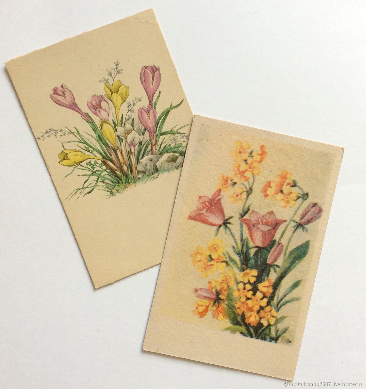 Зайцами картинки, издательства открыток германия