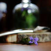 Косметика ручной работы handmade. Livemaster - original item DMS cream for coarse-pored skin with rosacea, Violet forest. Handmade.