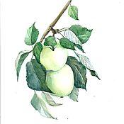"""Картины и панно ручной работы. Ярмарка Мастеров - ручная работа Акварель. """"Два зеленых яблока"""". Handmade."""