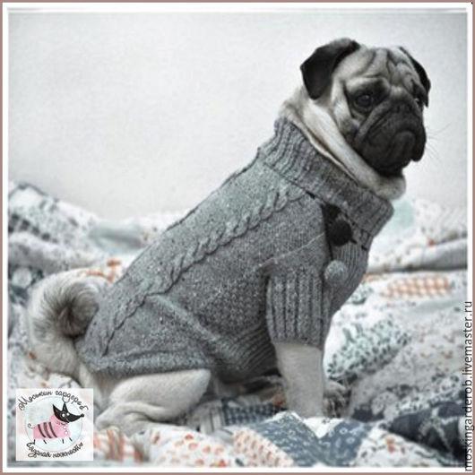 Свитер для собаки `Прогулочный`