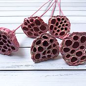 Природные материалы ручной работы. Ярмарка Мастеров - ручная работа Лотос розовый на вставке. Handmade.