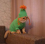 Для домашних животных, ручной работы. Ярмарка Мастеров - ручная работа вязаный свитер с шапочкой для котов и собак. Handmade.