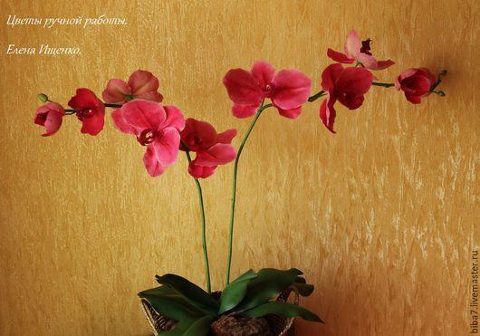 Интерьерные композиции ручной работы. Ярмарка Мастеров - ручная работа. Купить Цветы ручной работы Орхидея из полимерной глины. Handmade.