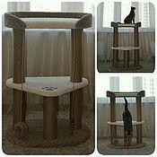 """Для домашних животных, ручной работы. Ярмарка Мастеров - ручная работа Комплекс """"Феликс"""". Handmade."""