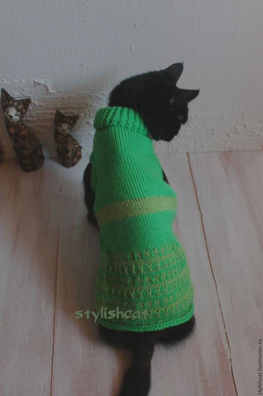 Одежда для кошек, ручной работы. Ярмарка Мастеров - ручная работа. Купить Свитер для кошек. Handmade. Зеленый, одежда для котят